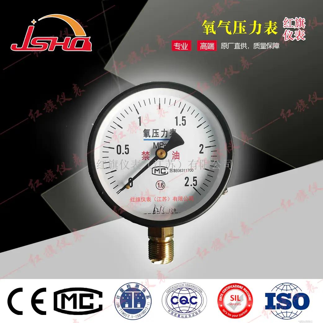数显氧气压力表/数字气压表