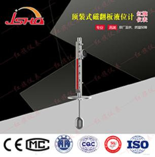 UHZ59-D 顶装式磁翻柱液位计